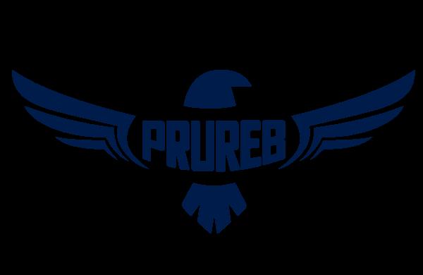 Prureb